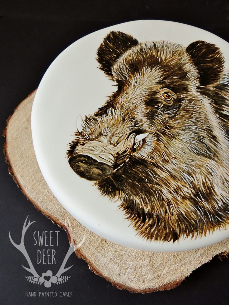 20 best images about boar on Pinterest Animals, Groom ...