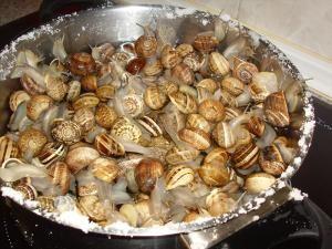 Cómo limpiar y cocinar caracoles