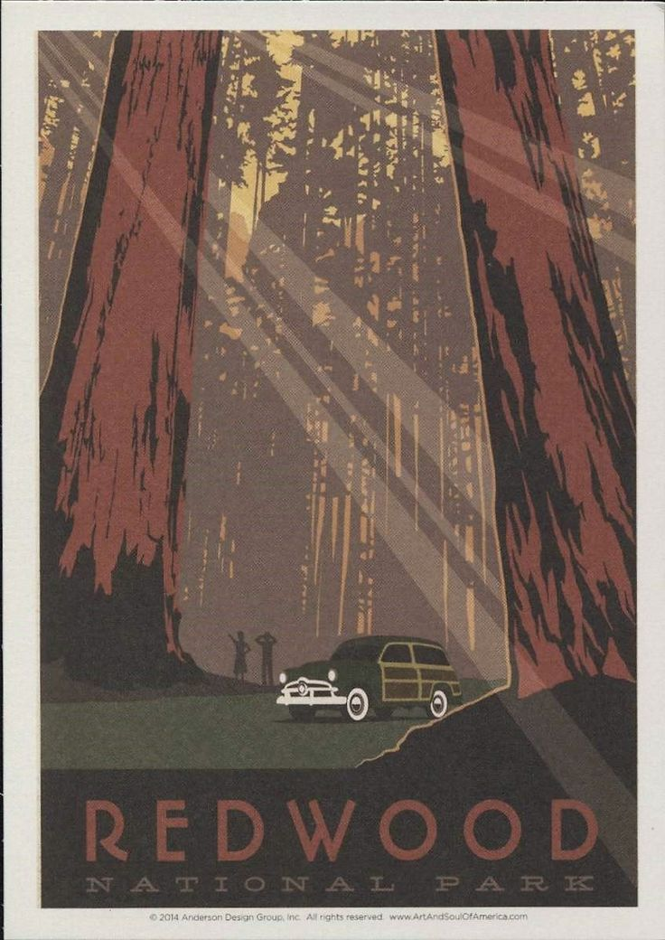 Redwood National Park, California, Travel Poster Style Postcard R001148