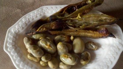 Roasted Fava Beans - The Greek Vegan
