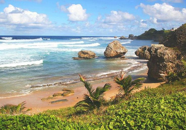 10 Fun Things To Do in Barbados with Kids
