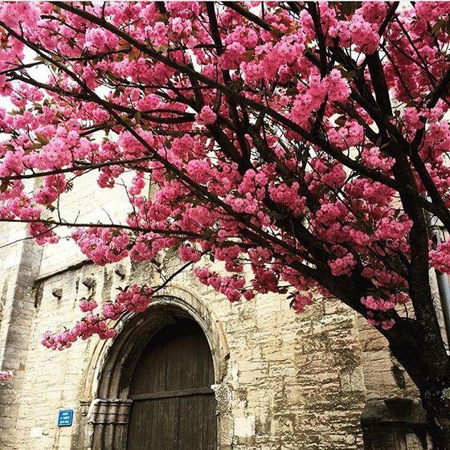 Passando só pra lembrar que no portal 1001 Dicas de Viagem tem um post com os principais motivos para você aproveitar a Primavera para viajar para a Europa! 😉😉😉 ---------------------------------------------------- 📍Besançon, França 🇫🇷. 📸 Foto: NiKi Verdot | @1001dicasdeviagem . 🌐 www.1001dicasdeviagem.com.br . 🎥 YouTube: 1001 Dicas de Viagem ---------------------------------------------------- #1001dicasdeviagem #dicasdeviagem #forbestravelguide #viajar #guiadeviagens #missãoVT…