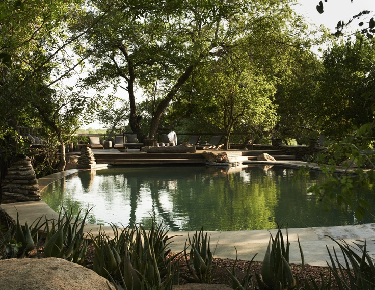 Perfect spot for meditation - Singita Boulders Lodge