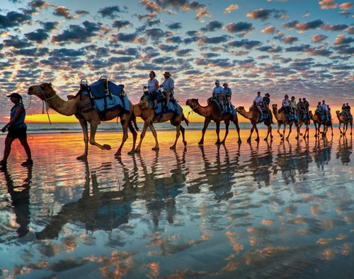"""""""Camels at Sunset, Cable Beach, [Broome, Western Australia],"""" by Symoto, via Flickr -- """"This picture was totally unplanned as I was setting up my tripod to take a few shots of the mackerel sky sunset. In fact I was concentrating so hard on the sunset I really didn't see the camel train coming until it was almost on me. I just swung the camera around and fired off a few shots."""""""