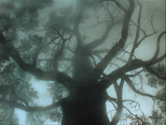 tree | from Hedgehog in the Fog by Yuriy Norshteyn (1975)
