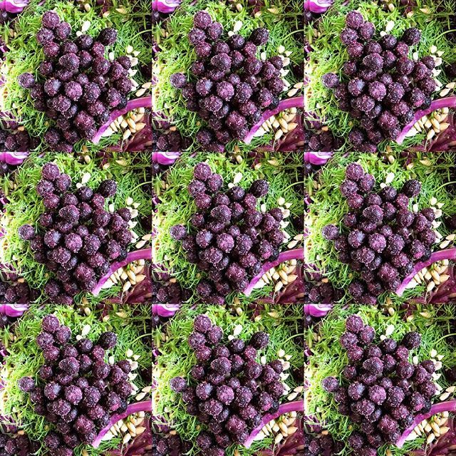 Anyone else love this colour combo? #purpleandgreen #colourandfood Ingredients include mixed greens, purple (red) cabbage, blueberries, sunflower seeds, dill and black sesame spurulina dressing #colouryourlife #textures #flavour #loveyourfood