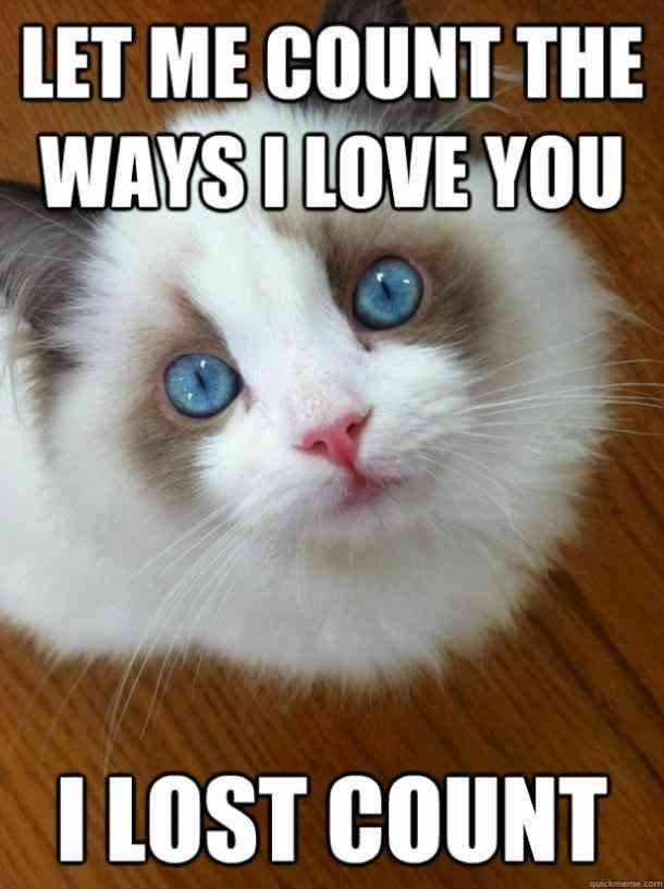 The 40 Best I Love You Memes That Are Cute Funny Romantic All At The Same Time Love You Meme Love Memes For Him I Love You Funny