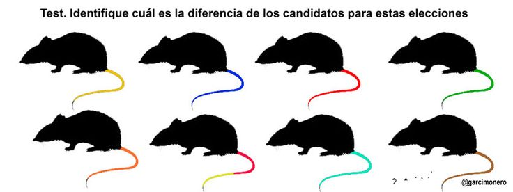 Test para identificar candidatos #Elecciones2015 http://www.elfinanciero.com.mx/pages/cartones-antonio-garci.html