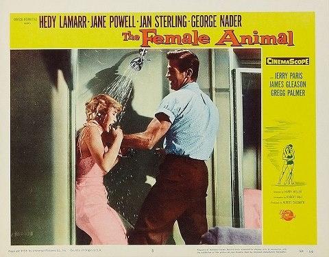 The Female Animal (Harry Keller, 1958)