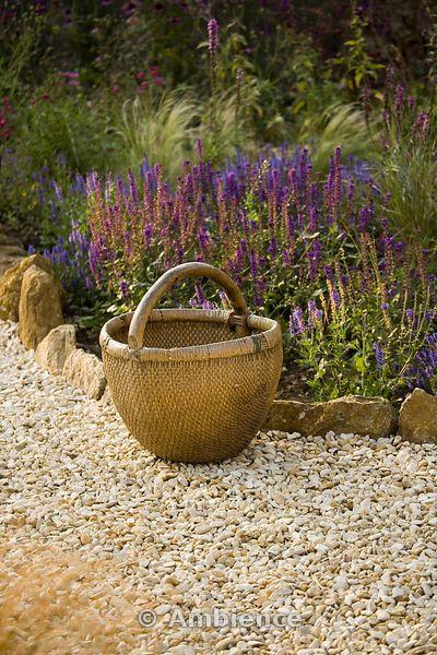 Rickyard Barn giardino, Northamptonshire - vecchio cestino di vimini cinese accanto a un confine con Salvias nel giardino ghiaia