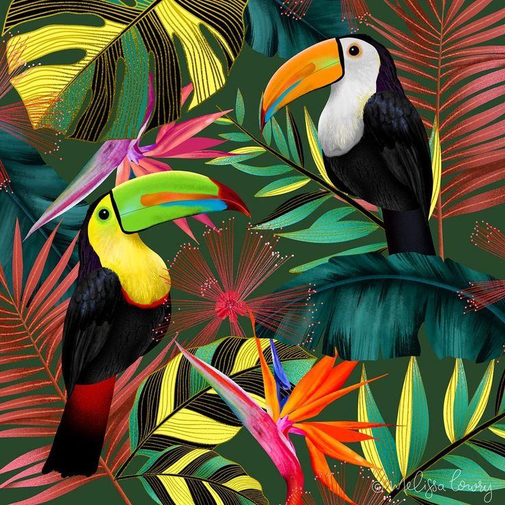 картинки с тропическими птицами когда только хотели