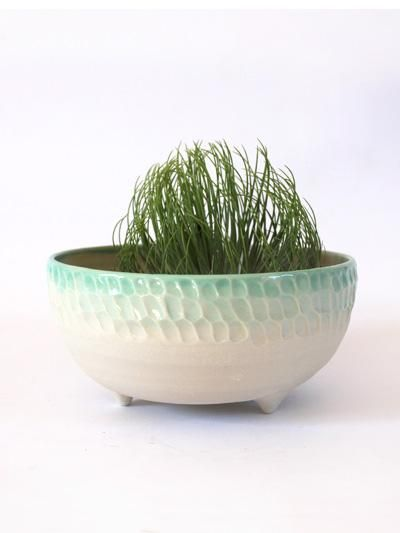 Round Ombre Planter - Mint   Hello Polly