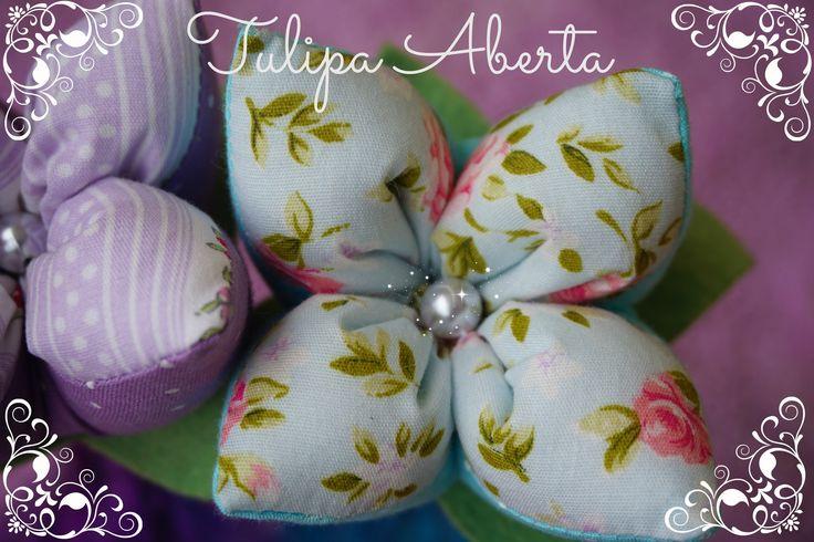 Tulipa Aberta