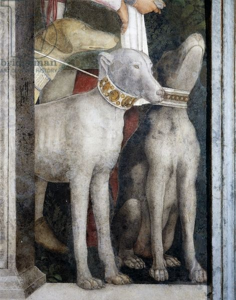 Detail from Meeting Wall, 1465-1474, by Andrea Mantegna (1431-1606), fresco, San Giorgio Castle, Wedding Chamber or Camera Picta, Mantua, Italy