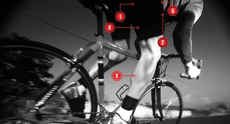 Não se trata apenas das coxas, para pedalar vários grupos musculares trabalham juntos. Veja aqui os músculos mais importantes no ciclismo e como treinar cada um deles de forma eficiente para melhorar o desempenho.   #bike #ciclismo #ciclismo de estrada #dicas de bike #dicas de como pedalar #DIcas de MTB #dicas de pedalada #mountain bike #mountainbike #MTB #speed