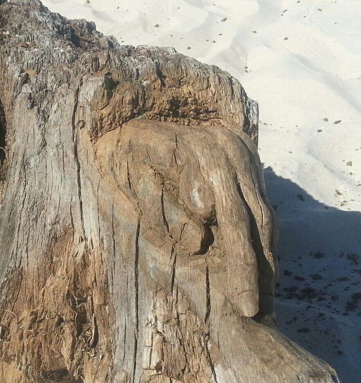 Wood sculpture. Hand made by Rob Roy. Debki beach...