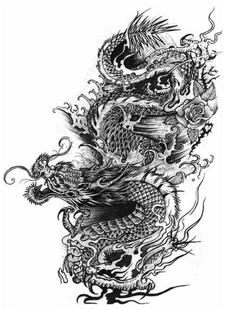 25 best images about dragon art on pinterest dragon art chinese dragon and dragon tattoo designs. Black Bedroom Furniture Sets. Home Design Ideas