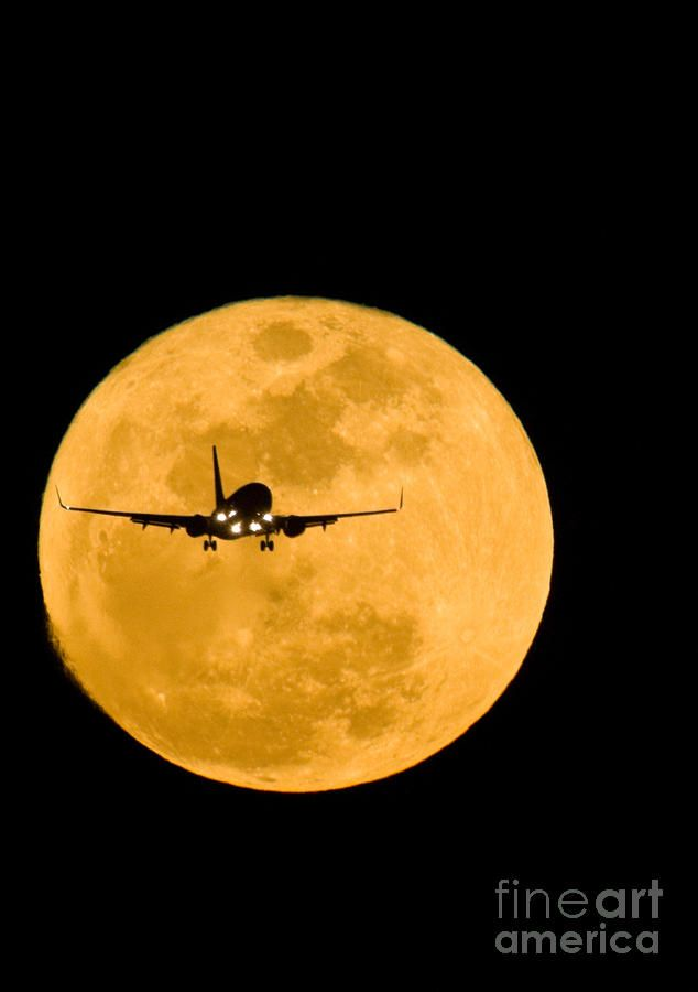 Airplane and moon Photograph - David Nunuk ©