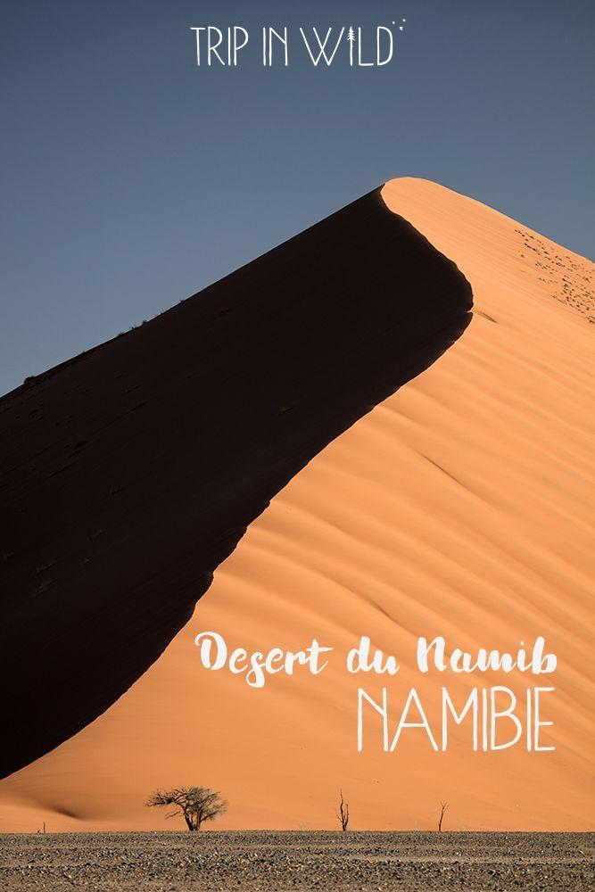 Les dunes géantes du désert du Namib.
