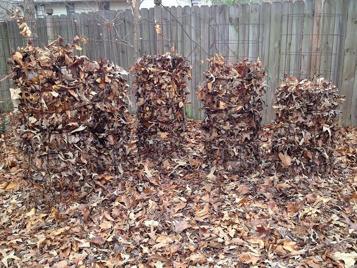 Clever idea! Don't store tomato cages, use them for cold weather leaf composting