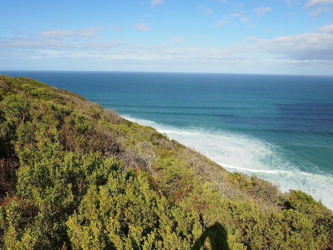 Where's Melbourne's Best Bushwalks? - Melbourne