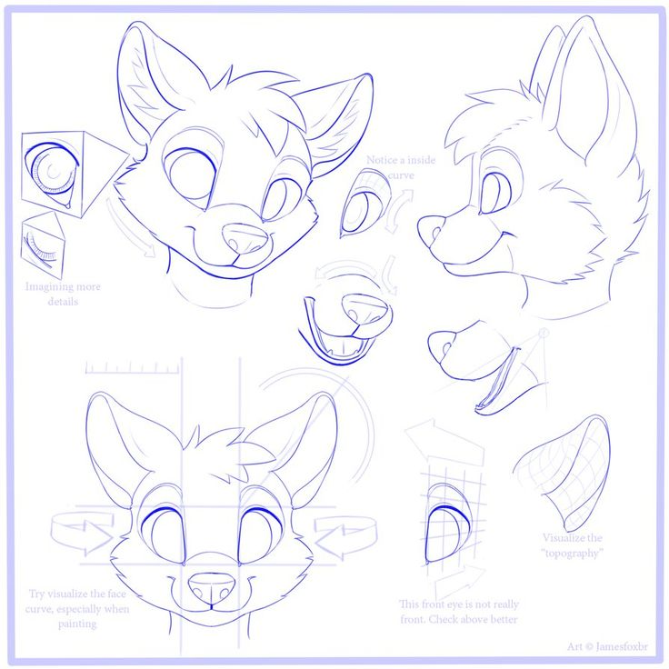 furry face tutorial - Google Search