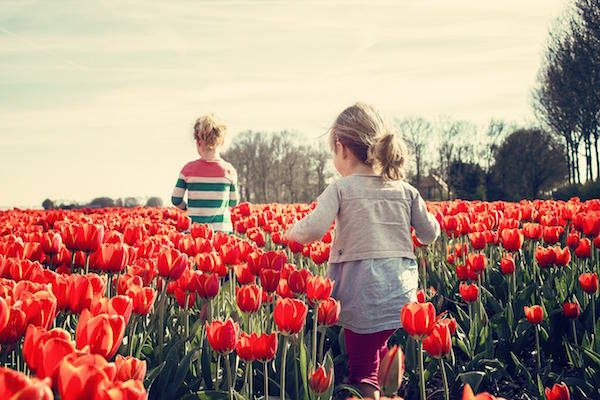 https://www.fijnuit.nl/blog/voorjaarsvakantie-dagje-uit-tips-voorkom-vervelen Op zoek naar een heerlijke voorjaarsvakantie? Gebruik deze tips en voorkom vervelen!