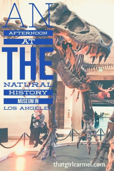 An afternoon at the Natural History Museum in Los Angeles