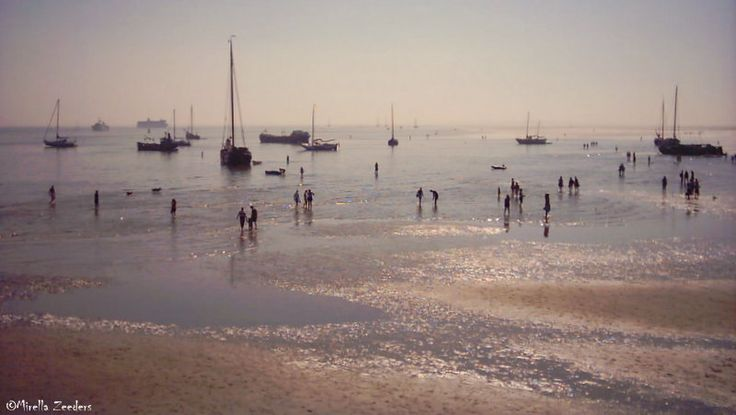 "The ""Green beach"" (het Groene strand), Terschelling"