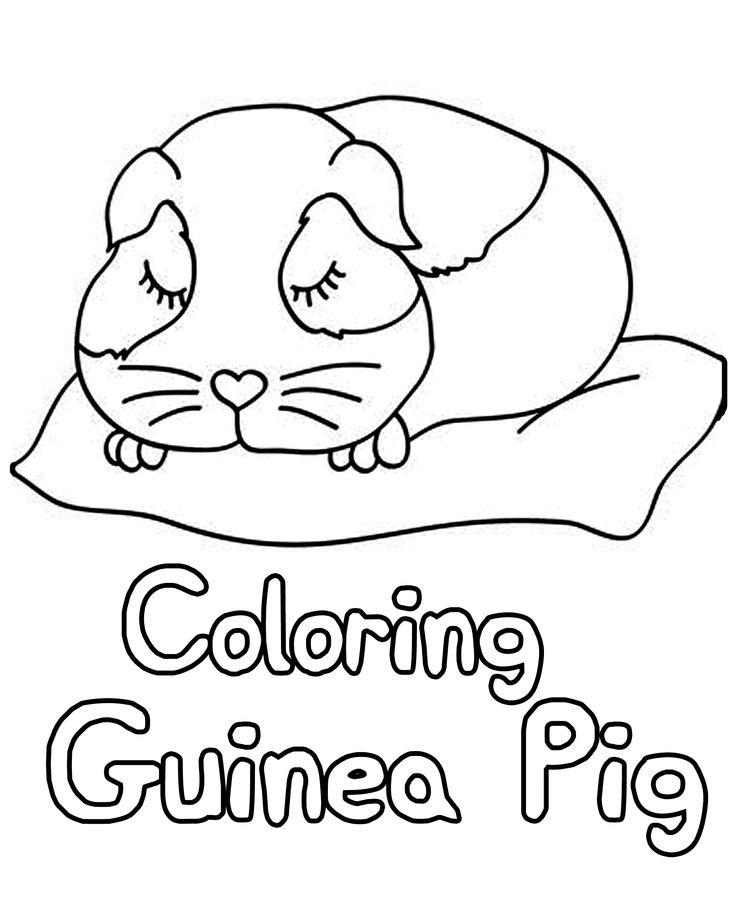Pin On Animal Coloring Book