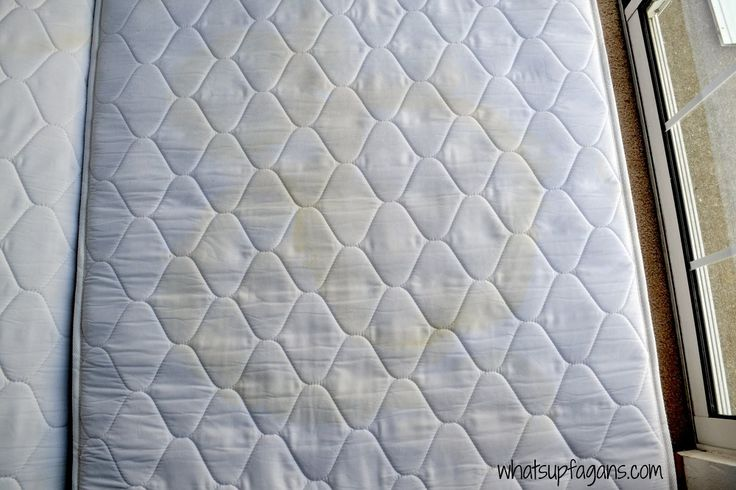 removing sex stains on mattress Huge Sanctuary