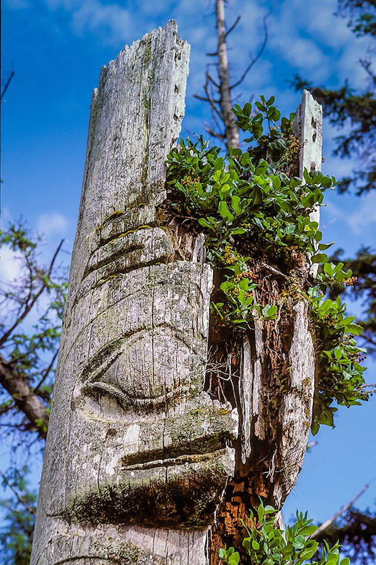 Remains of a Haida Mortuary Totem Pole, Ninstints, Queen Charlotte Islands - Canada | by Jett Britnell