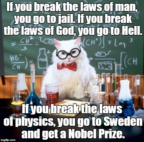 Chemistry Cat is breaking the lawz #Cat #Science