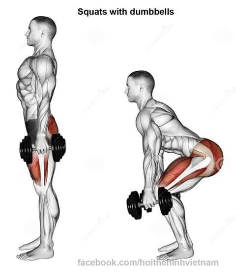 567 best exercises images on pinterest