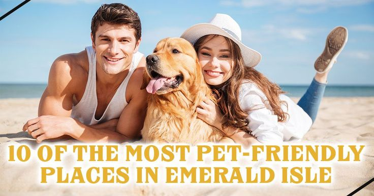 Book your pet-friendly Emerald Isle vacation rental then bring your furry friend to these dog-friendly spots on the Crystal Coast of NC.