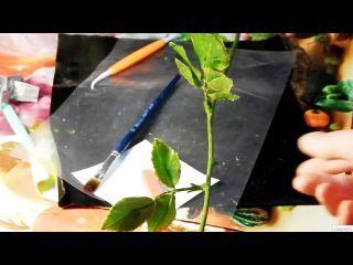 Это мастер класс как сделать стебель розы из холодного фарфора, показано сразу 2 ...