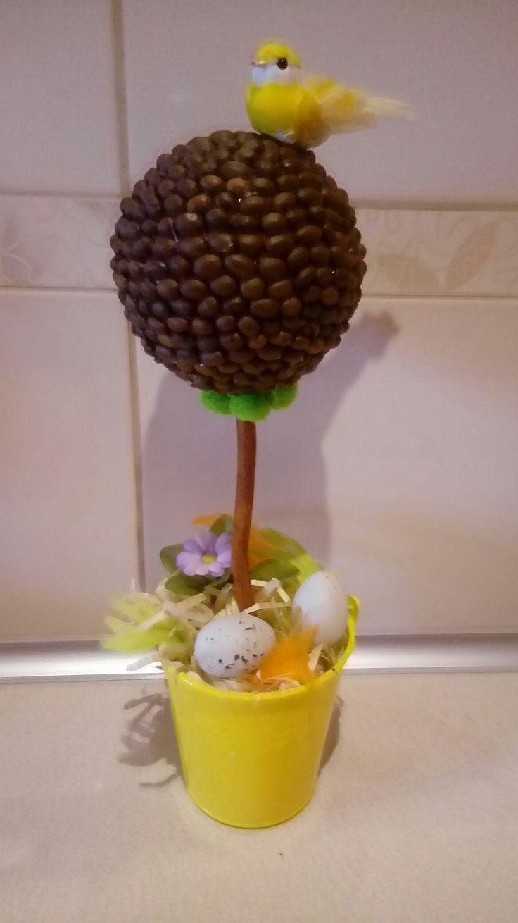Drzewko kawowe wielkanoc wiosna