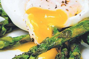 Eggs Matt Preston