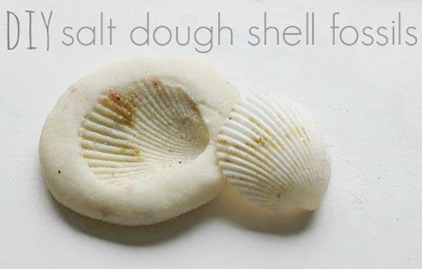 Lavoretto con pasta di sale: il fossile di conchiglia