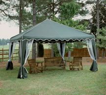 The Party Canopy 10'x10'- $319.99
