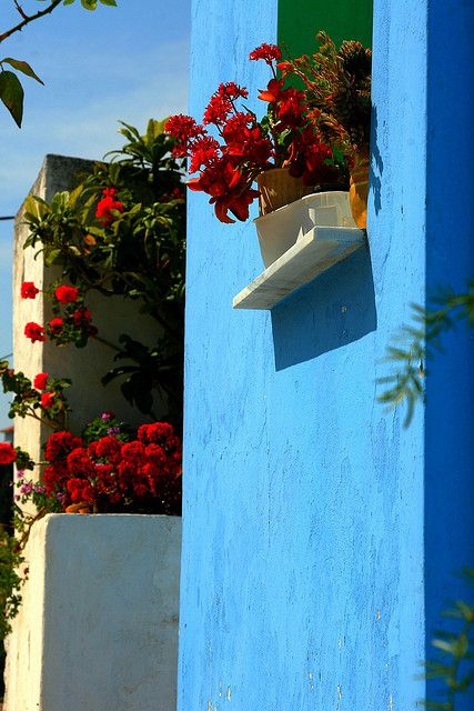 Blue wall and red flowers Koskinou,Rhodes Island,Dodecanese, Greece by Marite2007, via Flickr