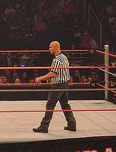 Stone Cold Steve Austin - Wikipedia, the free encyclopedia