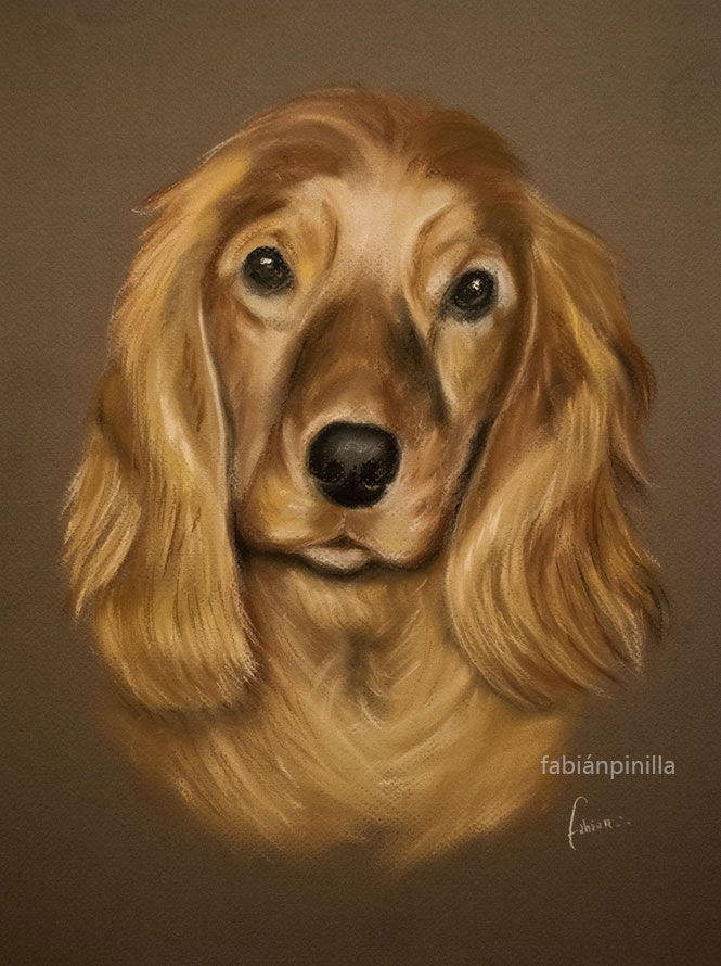 Retrato en pastel seco 30 x 40 cm Soft Pastels Portrait Paint  30 x 40 cm.