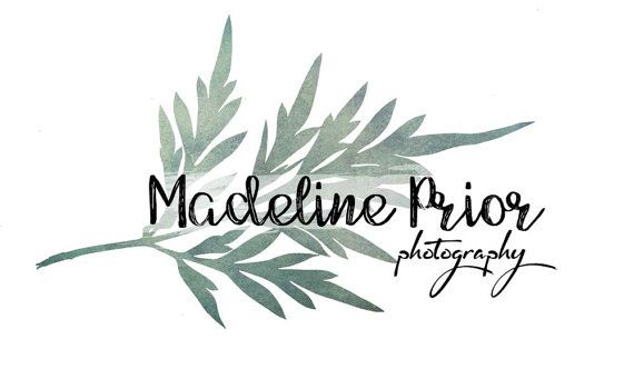 Premade Photography Logo and Watermark, Customize this design, Fern Leaf Logo…