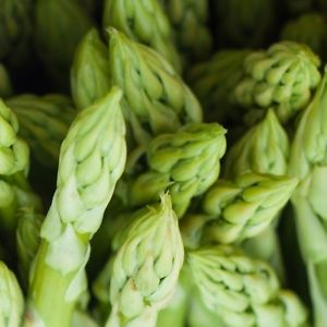 Plant these perennial vegetables once and reap their bounty year after year.