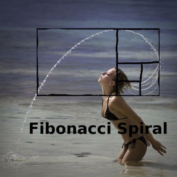 Everywhere you look, Fibonacci.