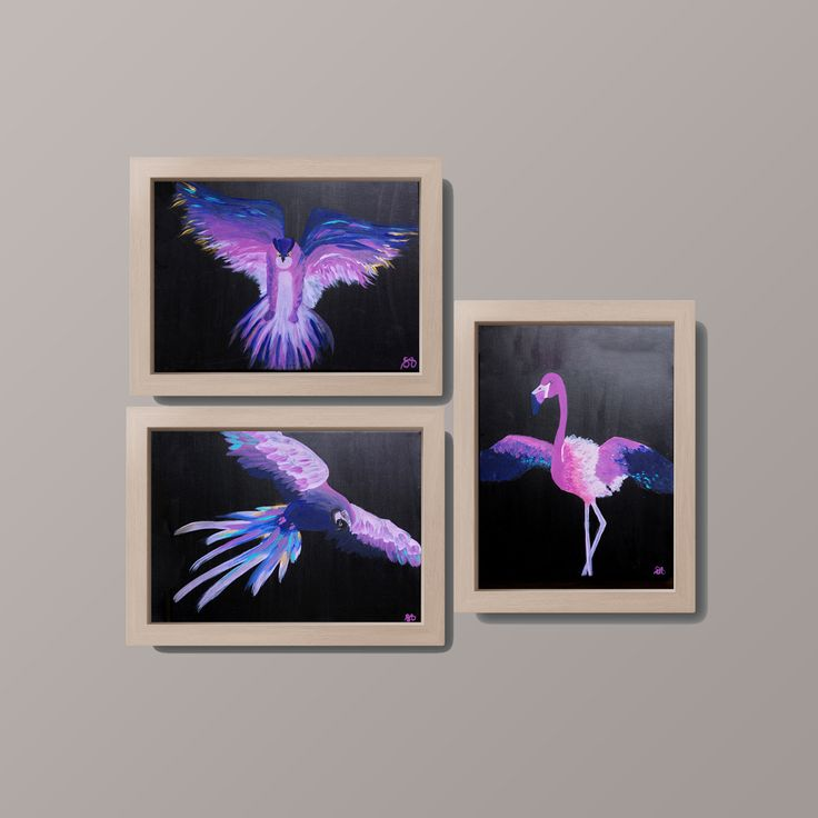 For sale: Acrylic original collection of paintings. Parrot, flamingo and owl.