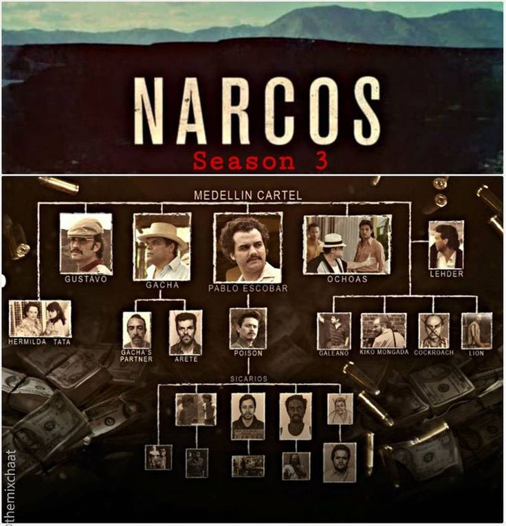 Now that the bloody hunt for #pabloescobar  has ended the #DEA turns its attention to the richest drug trafficking organization in the world: the #calicartel .This time around all rules have changed for the #narcos and their opponents  a fact many wont realize until its too late. #season3 up on #netflix now.#narco #cartel #colombia #mexico #wagnermoura #mexican #cartelles #medellin #cocaine #escobar #pablo #drugwar#netflixandchill #pedropascal #noyz#siguenos #narcoguerramx #noticias #music…
