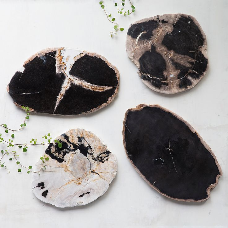 Petrified Wood Serving Board in House + Home Serving at Terrain