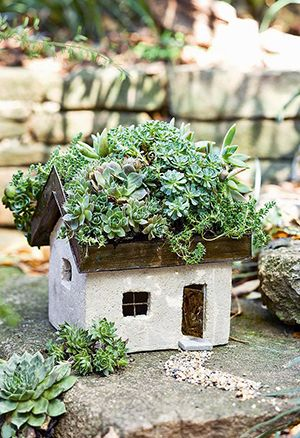 Succulents, moss, or even small flowers like threadleaf coreopsis, allysum, or clover would be adorable for the roof of this mini stone cottage.